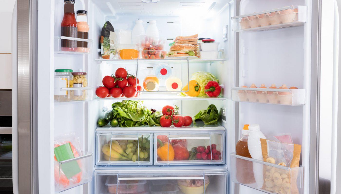criterion refrigerator reviews