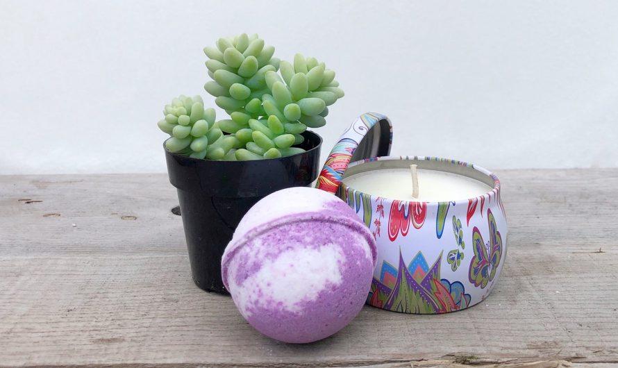Fairyblooms Reviews – Make All Your Succulent Dreams Come True!